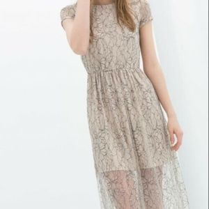 Zara Trafaluc Lace Midi Dress Blush Sheer Size S